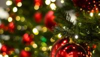 Eventi dicembre Trifoglio